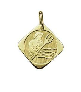 Pendente Oro Segno Zodiacale Acquario